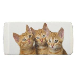 Three Cute Ginger Cat Kittens Friends Head Photo ; Eraser