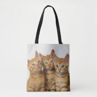Three Cute Ginger Cat Kittens Photo -  on Shopper Tote Bag
