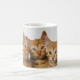 Three cute ginger kittens side by side coffee mug