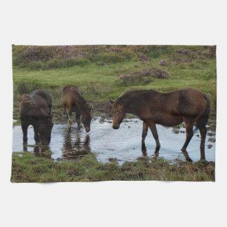 Three Dartmoor Ponies Drinking At Watering Hole Towel