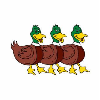 Three Ducks Standing Photo Sculpture
