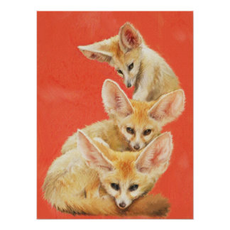 Three Fennec Fox Kits Poster