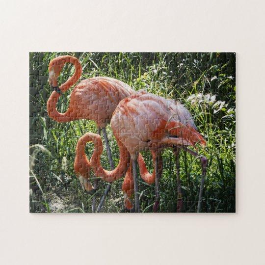 Three Flamingos Puzzle