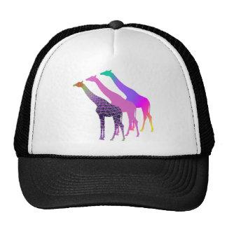 Three Giraffes Design 5 Cap