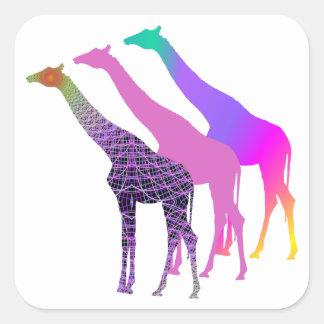 Three Giraffes Design 5 Square Sticker