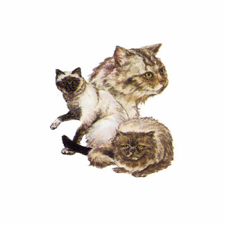 Three Gray and Golden Brown Pet Cats Sketched. Photo Sculpture