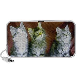 Three kittens doodle speakers