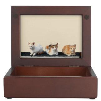 Three Kittens Keepsake Box