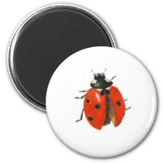 Three ladybirds 2013 magnet