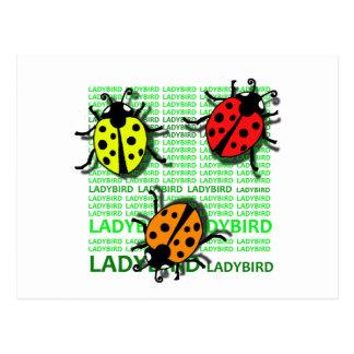 Three Ladybirds Postcard