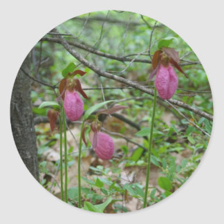 Three Ladyslippers Classic Round Sticker