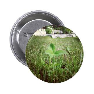 Three leaf clover button