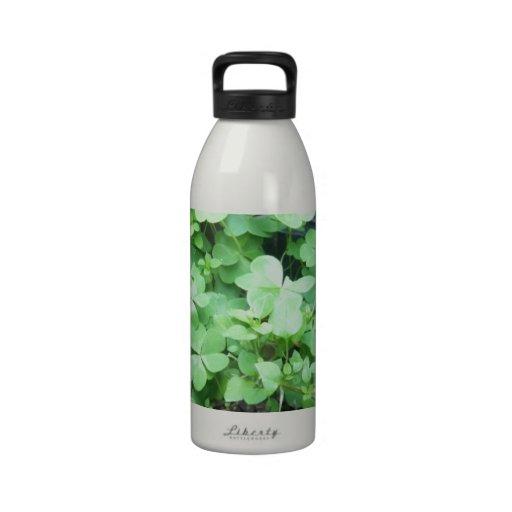 three leaf clover drinking bottle