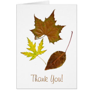 Three Leaves Template Greeting Card