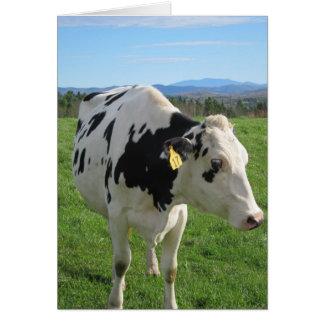 Three Legged Cow 5x7 Card