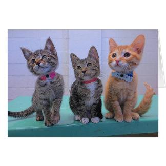 Three Little Kittens Card