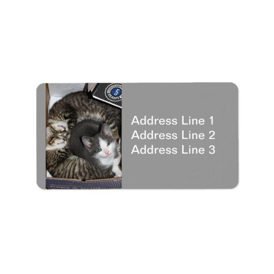 Three Little Kittens Label Address Label