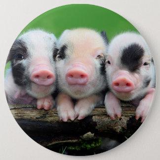 Three little pigs - cute pig - three pigs 6 cm round badge