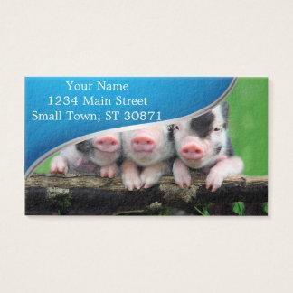 Three little pigs - cute pig - three pigs business card