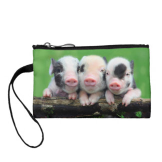 Three little pigs - cute pig - three pigs coin purse