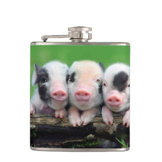 Three little pigs - cute pig - three pigs hip flask