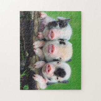 Three little pigs - cute pig - three pigs jigsaw puzzle