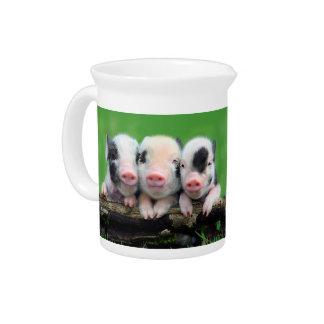 Three little pigs - cute pig - three pigs pitcher