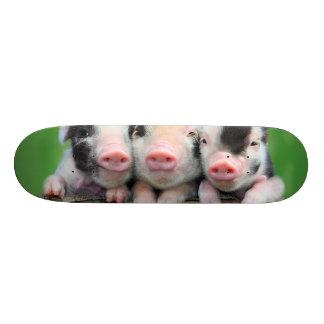 Three little pigs - cute pig - three pigs skateboard deck
