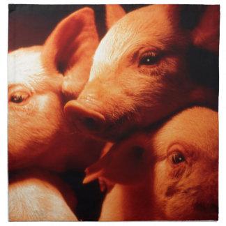 Three Little Pigs Napkin