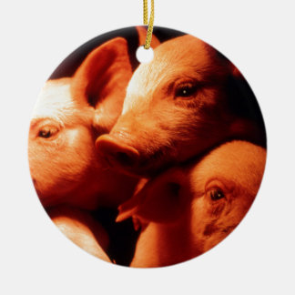 Three Little Pigs Round Ceramic Decoration