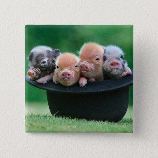 Three little pigs - three pigs - pig hat 15 cm square badge