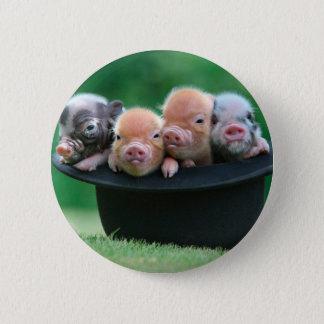 Three little pigs - three pigs - pig hat 6 cm round badge
