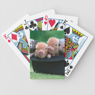 Three little pigs - three pigs - pig hat bicycle playing cards