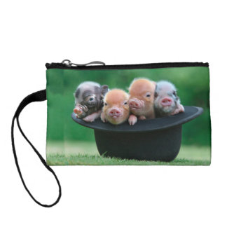 Three little pigs - three pigs - pig hat coin purse