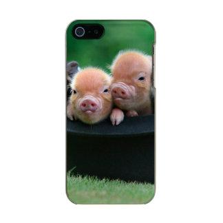 Three little pigs - three pigs - pig hat incipio feather® shine iPhone 5 case