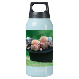 Three little pigs - three pigs - pig hat insulated water bottle