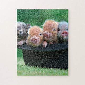 Three little pigs - three pigs - pig hat jigsaw puzzle