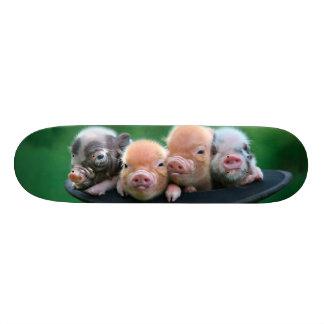 Three little pigs - three pigs - pig hat skateboards