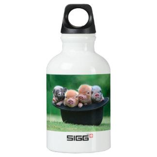 Three little pigs - three pigs - pig hat water bottle