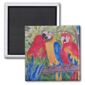 Three Maui Macaws Magnet