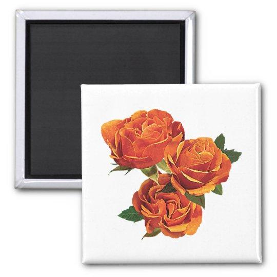 Three Orange Roses Magnet