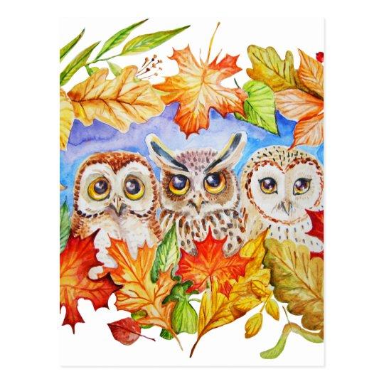 three owls autumn postcard