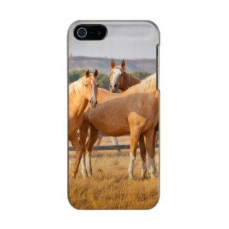 Three Palomino Ponies Incipio Feather® Shine iPhone 5 Case
