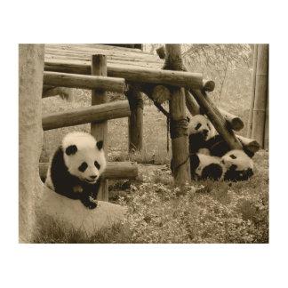 Three Pandas - Sepia Style Wood Wall Decor