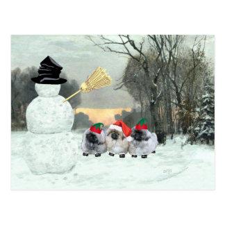 Three Pekingese Puppies Christmas Postcard