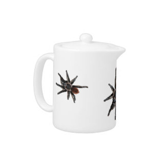 three pet tarantula spider tea pot