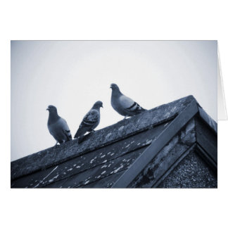 Three Pigeons on a Roof Card