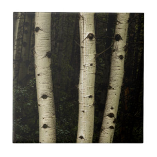 Three Pillars Of The Forest Ceramic Tile
