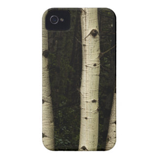 Three Pillars Of The Forest iPhone 4 Case