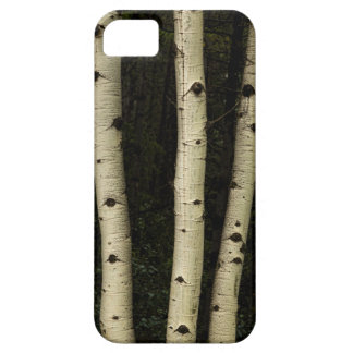 Three Pillars Of The Forest iPhone 5 Covers